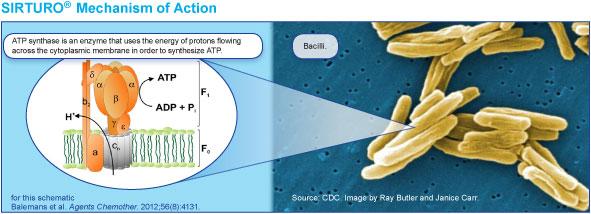 SIRTURO® (bedaquiline)| Mechanism of Action| Official Website